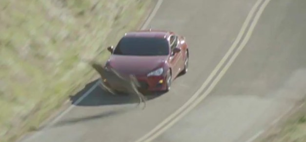Scion FR-S Avoids Deer During Commercial Shoot