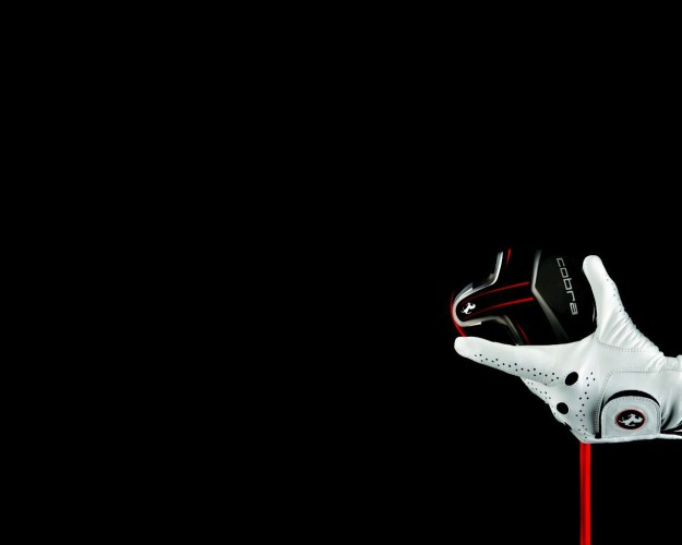 Ferrari Cobra Puma Golf GLove and Driver