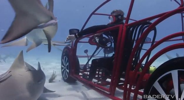 Volkswagen Beetle Shark Week Cage
