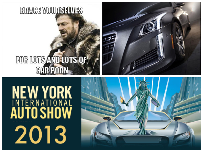 2013 NYIAS Banner