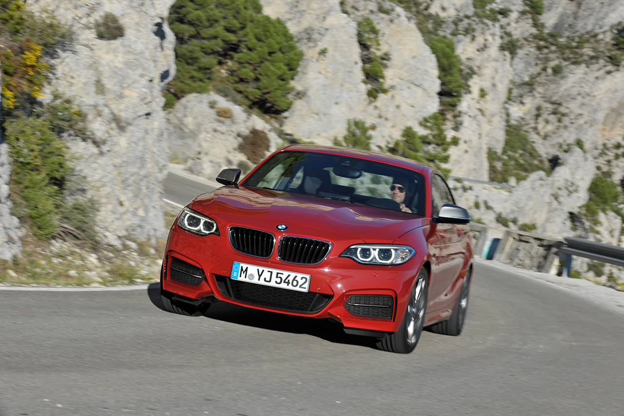2013 BMW 2-Series Coupe (14)