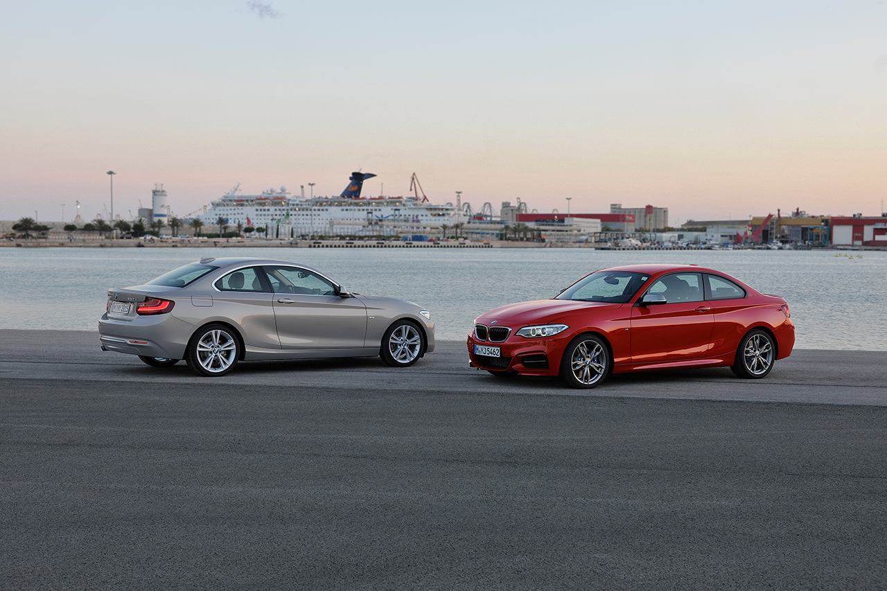 2013 BMW 2-Series Coupe (20)